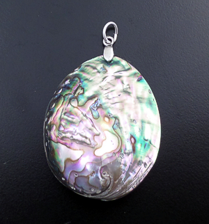 Navajo - Reversible Complete Abalone Shell Pod & Sterling Silver Pendant #43384C $30.00